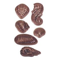 Schokoladenform Meeresfrüchte aus Polycarbonate