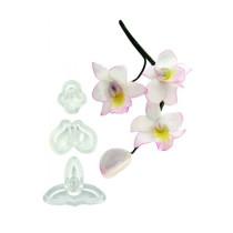 Singapur Orchideen Cutter small, 3-teilig
