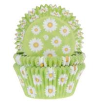 Muffinförmchen hellgrün mit Gänseblümchen, 50 Stk.
